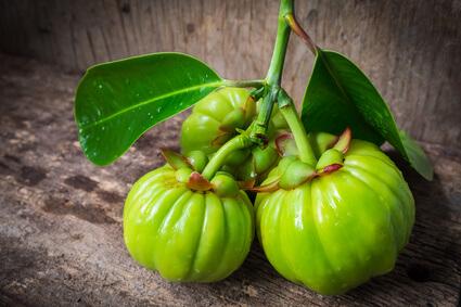 Die Frucht Garcinia Cambogia